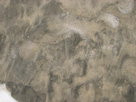 free wet sand texture sample 4